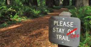 If your kids stay on the trail, are they really in nature?